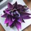 rose_quartz_happy