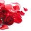 id:roseriche