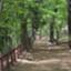 id:ryoumamodoki
