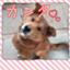 id:ryoutoku5963kon