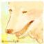 id:ryumesa