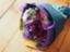 id:s-iris-k