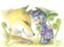 id:sakiho0701