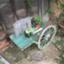 id:sakiia129