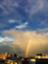 id:sakurasaku71011