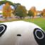 id:sakyo006