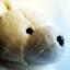 id:saneyuki_s