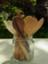 id:sasanaki337