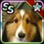 sasuke0812