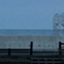 seaefrain