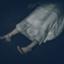 id:sellotape-a87