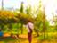 id:sevenstarharu
