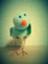 id:shibacci
