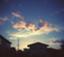 id:shibokusa