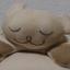 id:shibuhikky