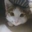 shikakou