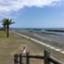 shin_taro_324
