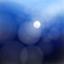 id:shinjumaru