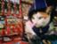 shino_kaneco