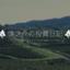 shinsuketanaka0528