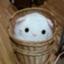 id:shiro-ani