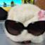 id:shiro-choko