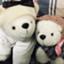 id:shirochan-abroad
