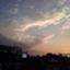 id:shogomusic