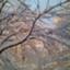 id:silver-snow