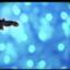 sky321940913