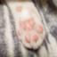 id:sky_genkakuneko