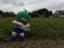 id:smallfieldphilo