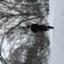 id:snowtrailtrailmanman101
