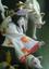 id:snowtree-yuki