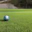 soccerdaisuki