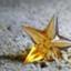 stardrops2018