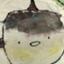 id:sumahoyakkyoku