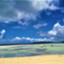 id:sunreversehappy