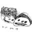id:suzuki-family