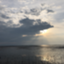 id:taipon2018