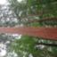 id:takanori0217