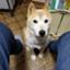 id:takawata4121