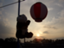 id:tanemaki