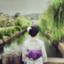 id:taoyakagirl