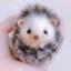 id:tikutikushop
