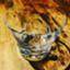 id:toast0708