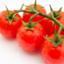 tomato3104