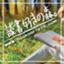 id:tomo_book_aya