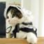 id:tomono-blog