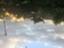 id:toridenohito